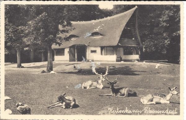 Mollaan, Hertenkamp 1935
