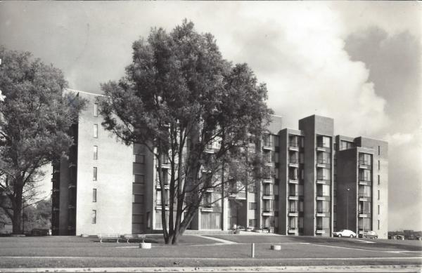 Dompvloedslaan, Oldenhove, 1963