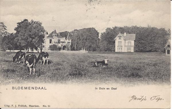 Lage Duin en Daalscheweg, Villa Elshof, 1903
