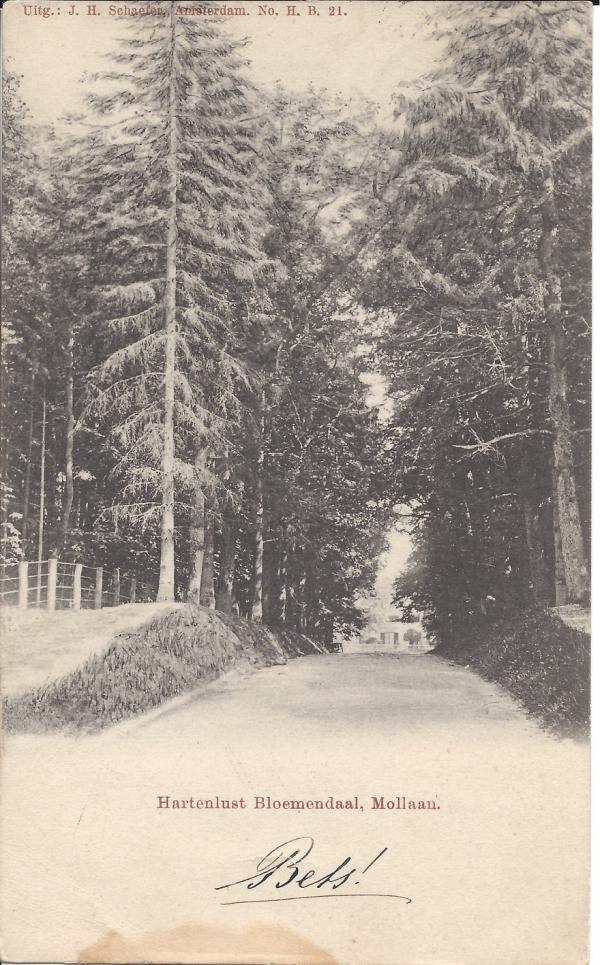 Mollaan, 1901