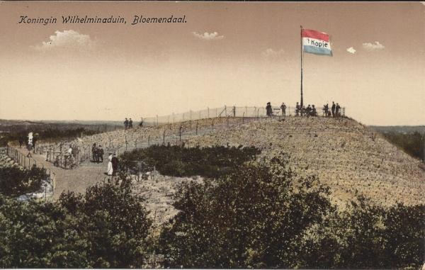 Hooge Duin en Daalscheweg, 't Kopje,(6)
