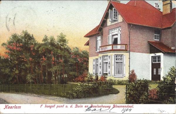 Hooge Duin en Daalscheweg (1), 1904