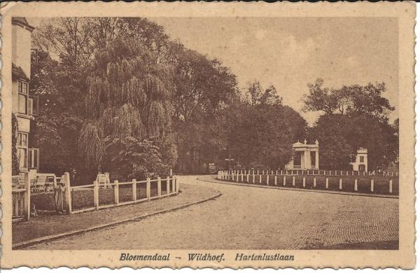 Kennemerweg, Theekoepel