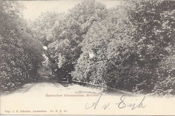 Mollaan, 1903