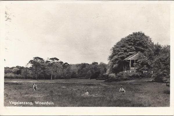 Woestduin, Renbaan, Tribune, 1954