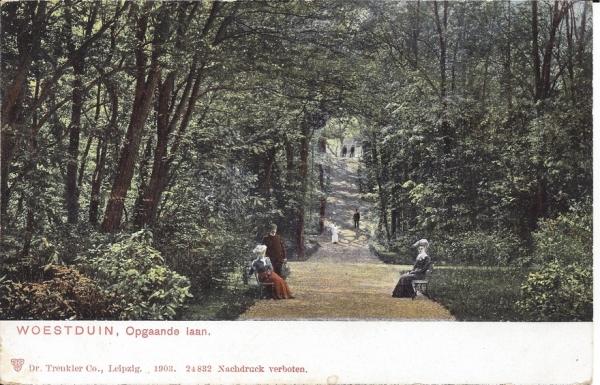 Woestduin, Renbaan Woestduin, Opgaande Laan, 1903