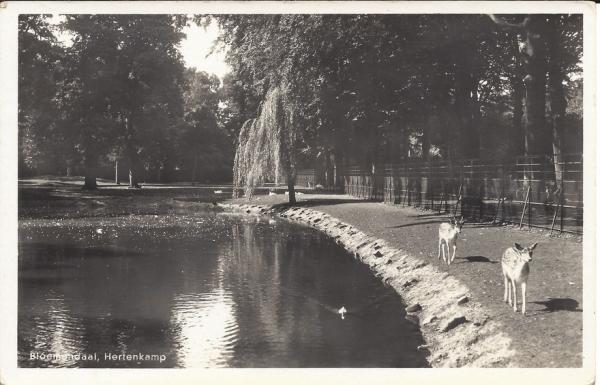 Mollaan, Hertenkamp 1949