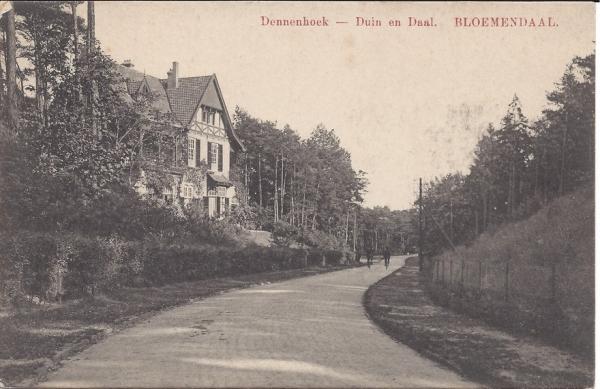 Parkweg, Villa Dennenhoek (2)